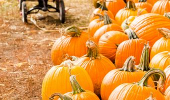 Top 10 Fall Festivals In Indiana for 2018