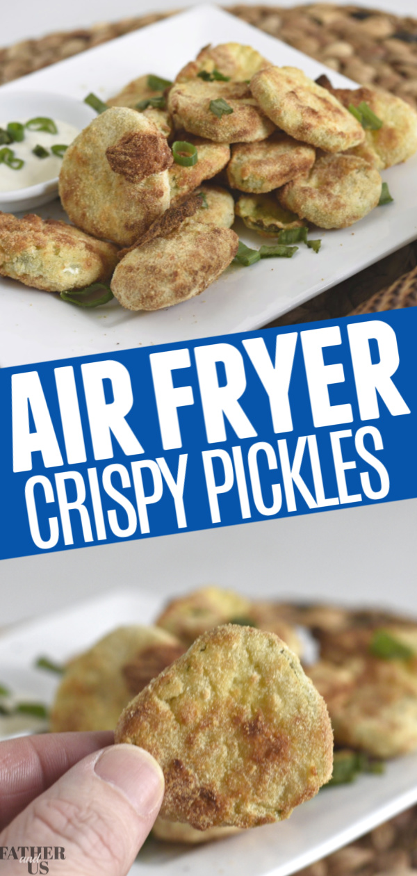 Air Fryer Pickles Pin